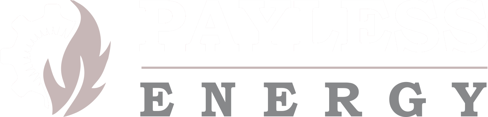 Payless Energy LLC | Supplier of Natural Gas and Electricity